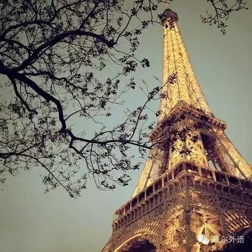 【法式浪漫】关于埃菲尔铁塔的唯美句子