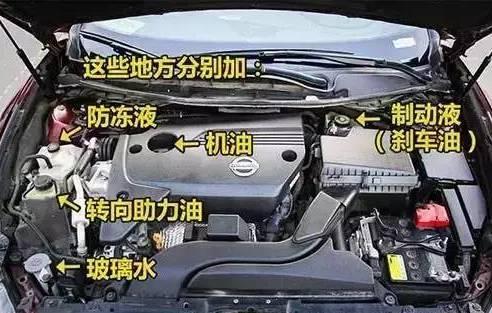 这5种油一定要换,否则你的汽车将会变为废铁!